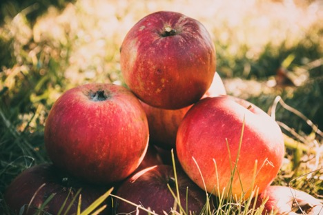 Can an Apple a Day Really Keep Cavities Away?